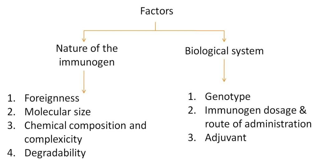Immunogenicity factor