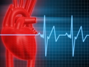 cardiovascular disease, heart problem